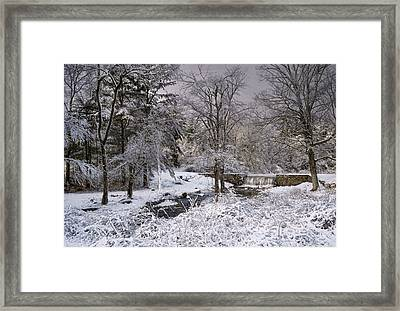 Enchanted Winter Framed Print by Robin-Lee Vieira