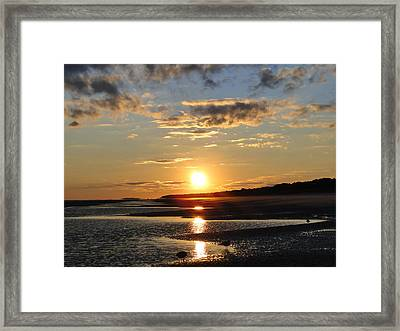 Enchanting Sunset Framed Print by Cindy Croal