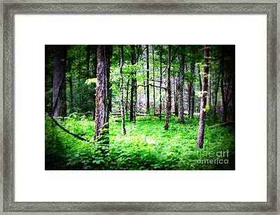 Enchantment Framed Print