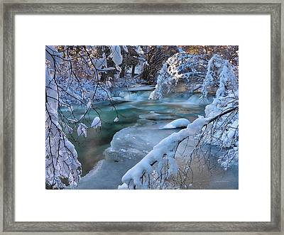 Enchantment Of Winter Framed Print by Leland D Howard