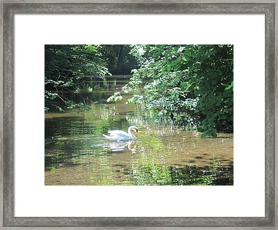 Framed Print featuring the photograph Enchantment by Pema Hou