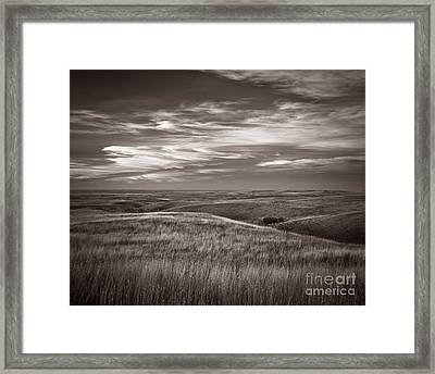 Enchantment Framed Print by Royce Howland