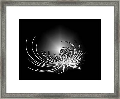 Framed Print featuring the photograph Encircling The Light by Ellen Tully