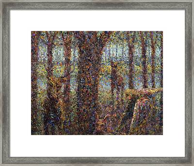 Encounter Framed Print by James W Johnson
