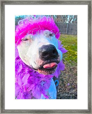End Bsl Officer Do I Look Like I'm Into Dog Fighting? Framed Print by Q's House of Art ArtandFinePhotography