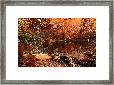 End Of Path Framed Print by Lourry Legarde