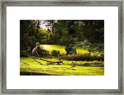 End Of Path Merged Image Framed Print by Thomas Woolworth