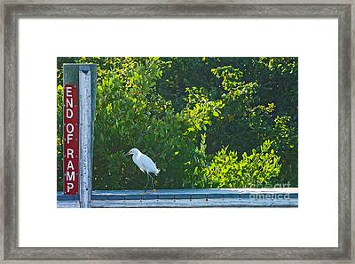 End Of Ramp Framed Print by Anne Kitzman