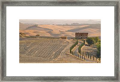 End Of Season In Tuscany Framed Print