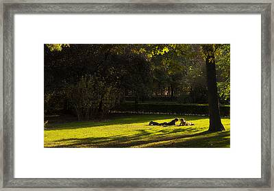 End Of Summer Framed Print by Pablo Lopez