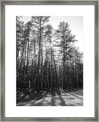 End Of The Day Framed Print by Barbara Bardzik