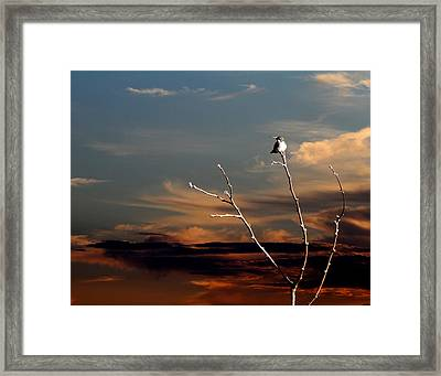 Framed Print featuring the photograph End Of The Day by John Freidenberg