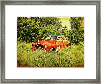 End Of The Line Framed Print by Dianne  Lacourciere