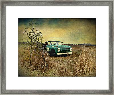 End Of The Ride  Framed Print by Dianne  Lacourciere