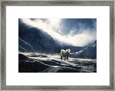 End Of The World Framed Print by Milan Karadzic