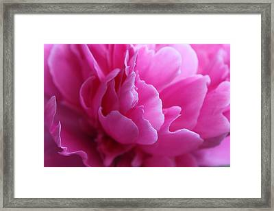 End Of The World Pink Framed Print