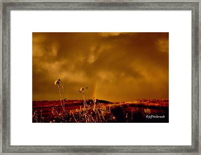 End Of Time 2 Framed Print