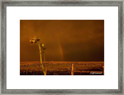 End Of Time 5 Framed Print