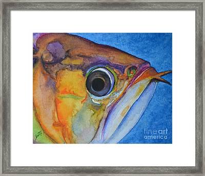 Endangered Eye IIi Framed Print