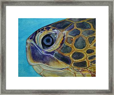 Framed Print featuring the painting Eye Of The Honu by Suzette Kallen