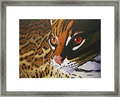 Endangered - Ocelot Framed Print by Mike Robles