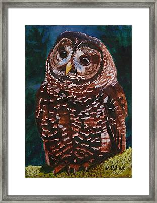 Endangered - Spotted Owl Framed Print by Mike Robles