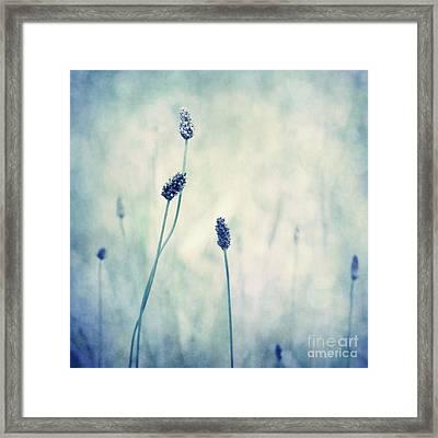 Endearing Framed Print by Priska Wettstein