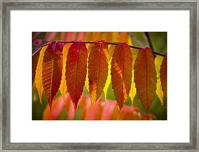 Ending With Fire Framed Print