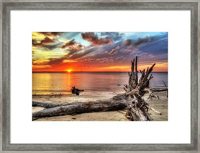 Endings Framed Print
