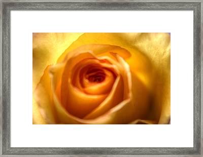 Endless Beauty Framed Print
