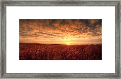Endless Oz Framed Print