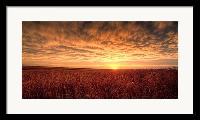 Farm Sunrise Framed Prints