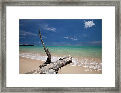 Endless Paradise Framed Print by Pete Reynolds