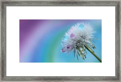 Endless Wish Framed Print by Krissy Katsimbras