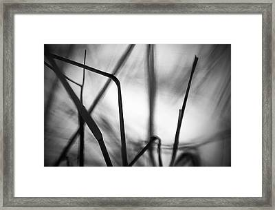 Framed Print featuring the photograph Energy by Arkady Kunysz