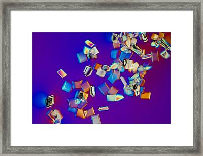 Energy Drink (light Micrograph) Framed Print by Science Photo Library