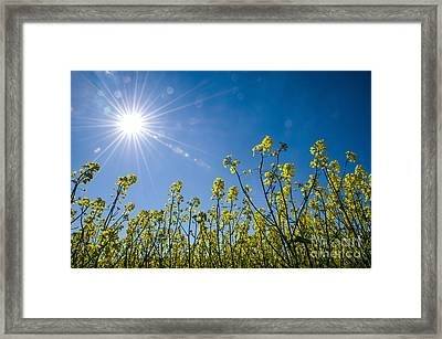 Framed Print featuring the photograph Energy by Kennerth and Birgitta Kullman