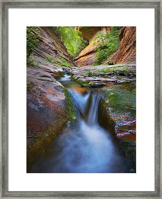 Energy Framed Print by Peter Coskun