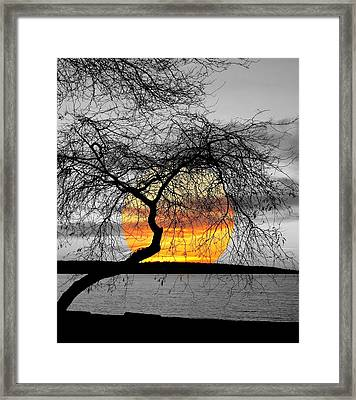English Bay Sunset Framed Print by Brian Chase