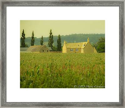 English Countryside Framed Print by Marie  Cardona