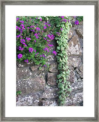 English Garden Wall Framed Print