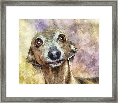 Framed Print featuring the painting English Hound Hunting Dog by Georgi Dimitrov
