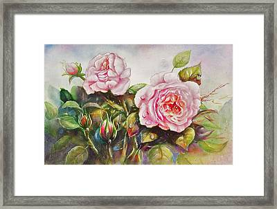 English Roses Framed Print by Patricia Schneider Mitchell