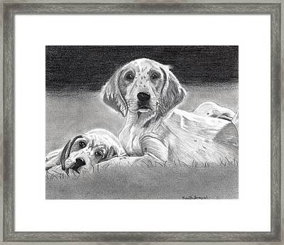 English Setter Puppies Dog Framed Print by Olde Time  Mercantile