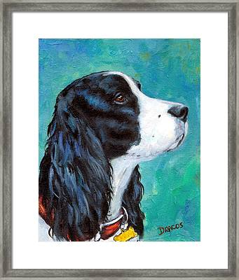English Springer Spaniel Profile Framed Print by Dottie Dracos