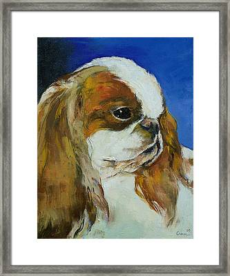 English Toy Spaniel Framed Print by Michael Creese