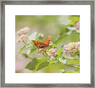Enjoy The Little Things Framed Print by Kim Hojnacki