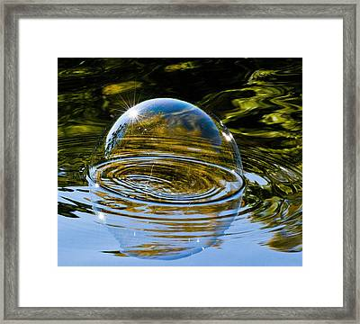 Enjoy This Moment Framed Print by Terry Cosgrave