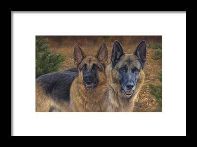 German Shepherd Framed Prints