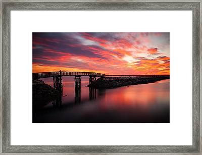Enjoying The Show Framed Print by Lee Costa